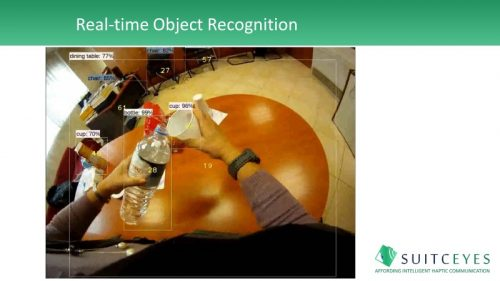 example image of real-time object recognition